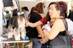 Expomascotas_IMG_7419